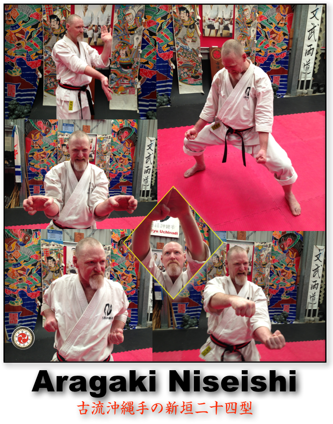 "NOW AVAILABLE at $6.95 USD Koryu Uchinadi's Aragaki Niseishi Kata is now available. The presentation features the kata routine itself from several angles and includes close-ups & slow-motion of otherwise hard to see techniques. The kata is also curriculum-based and required learning for any and all KU Yudansha who are interested in, ""getting it the CORRECT way!"" Payment via Paypal c/o patrick_mccarthy@mac.com"